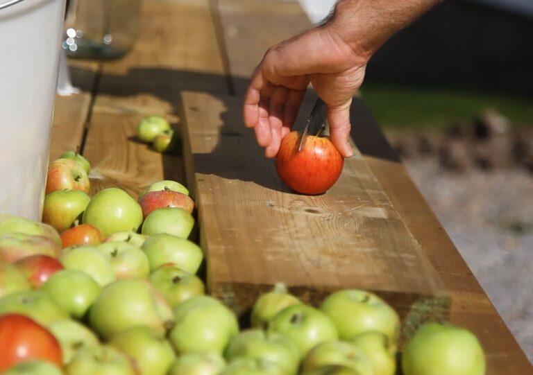 kutt epler cider